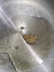 minced garlic in cooking oil