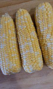 corn riblets ribs